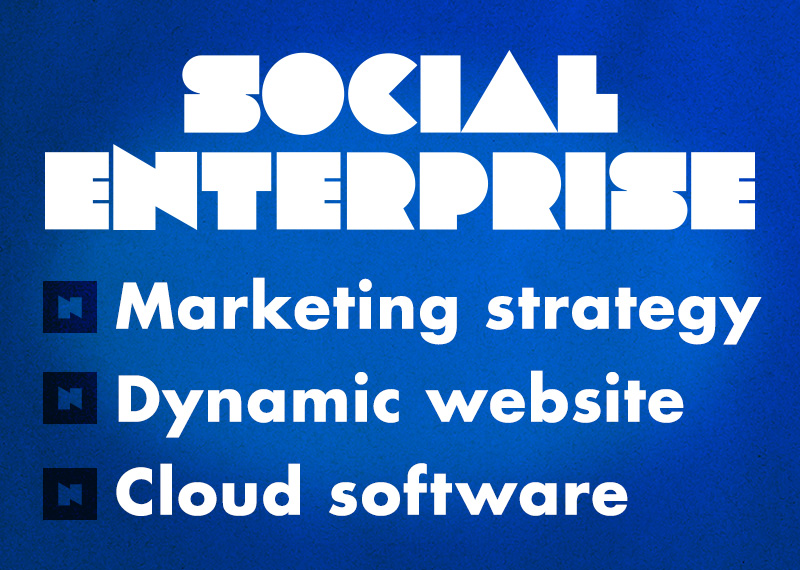 Marketing strategy, website and software for a social enterprise